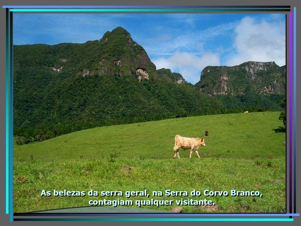 P0011541 - URUBICI - VISTA DA SERRA GERAL CORVO BRANCO-650