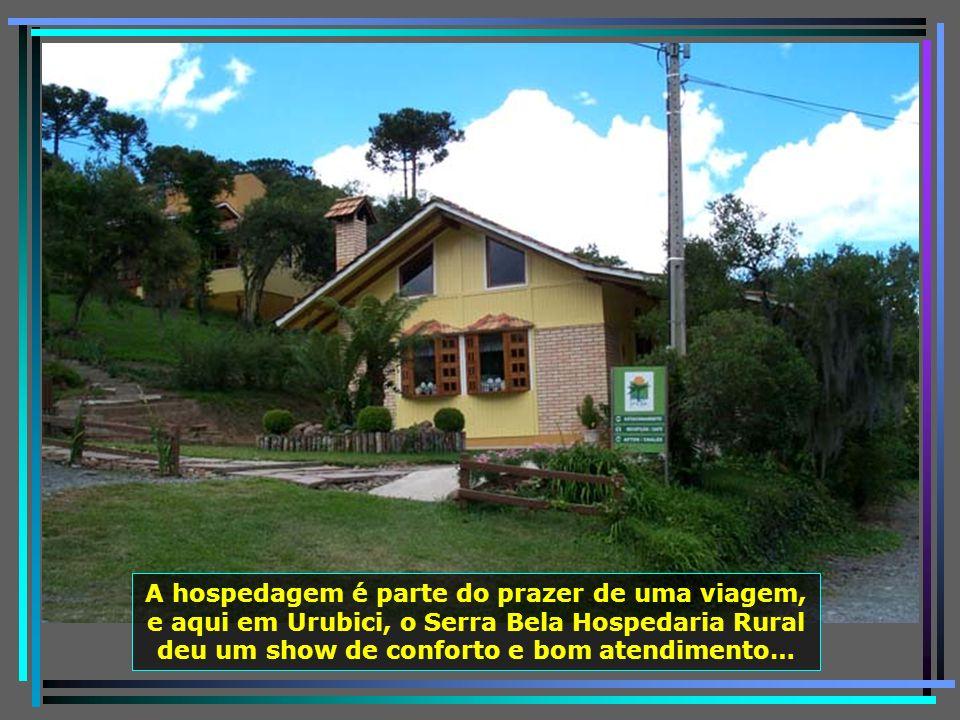 P0011429 - URUBICI - SERRA BELA HOSPEDARIA RURAL-650
