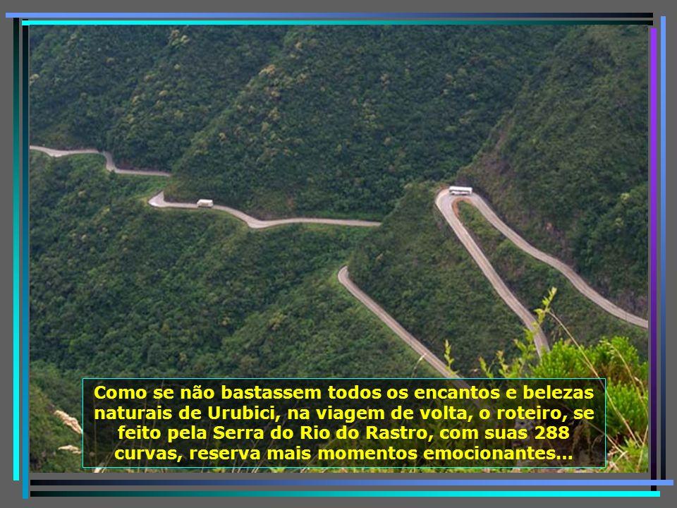 P0011697 - LAURO MULLER - SERRA DO RIO DO RASTRO-650