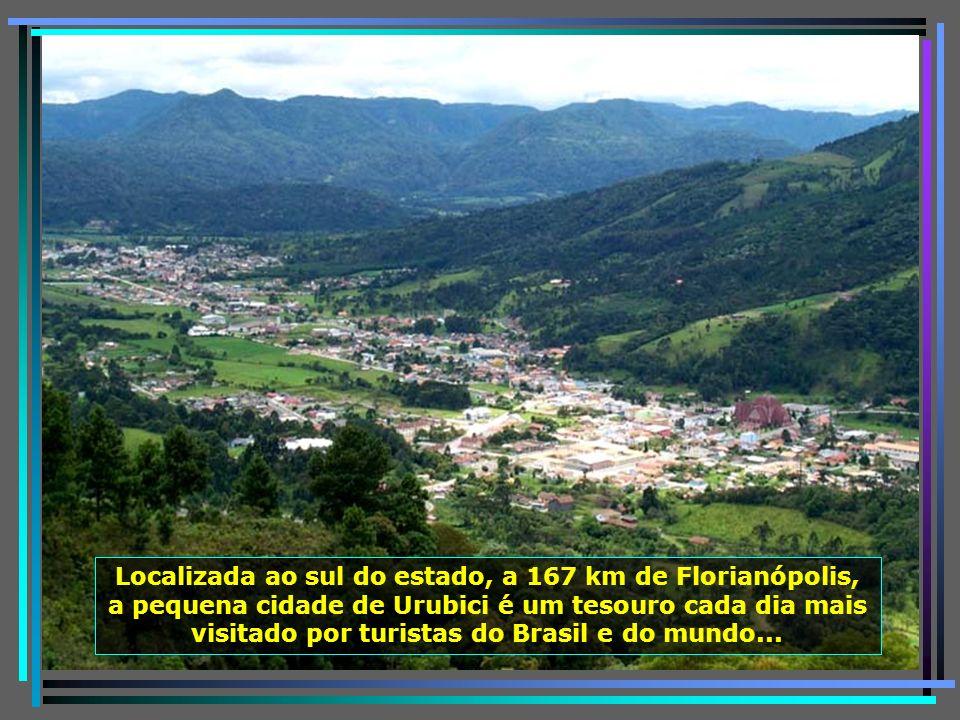 P0011248 - URUBICI - VISTA CIDADE DO BELVEDERE-650
