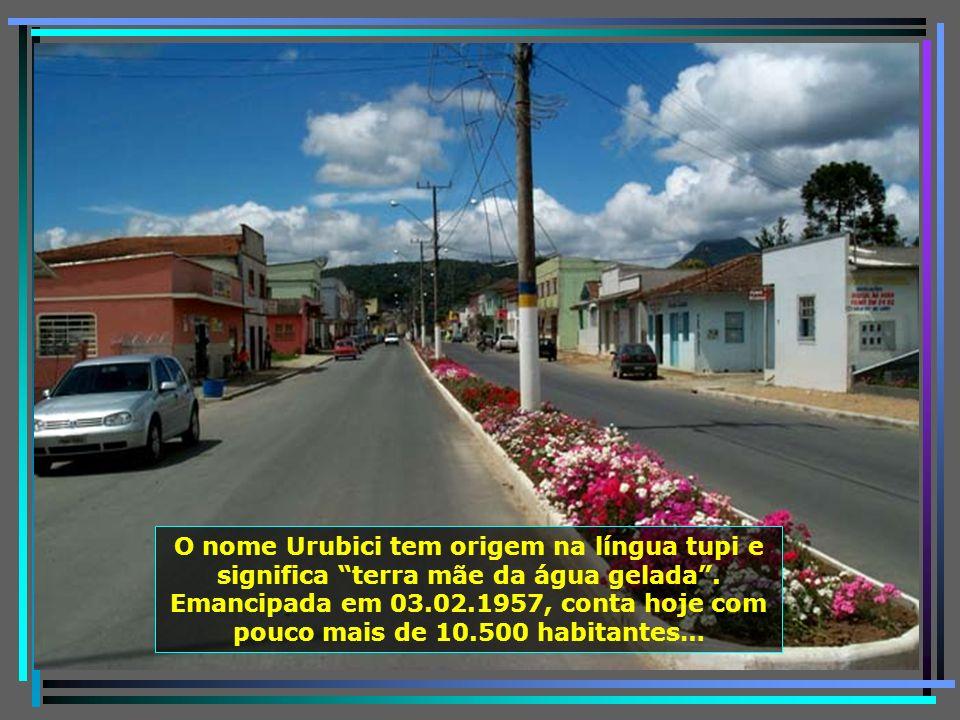 P0011447 - URUBICI - AVENIDA DA CIDADE-650