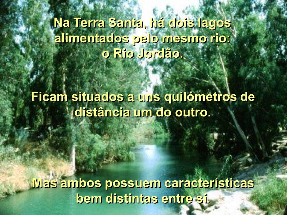 Na Terra Santa, há dois lagos alimentados pelo mesmo rio: