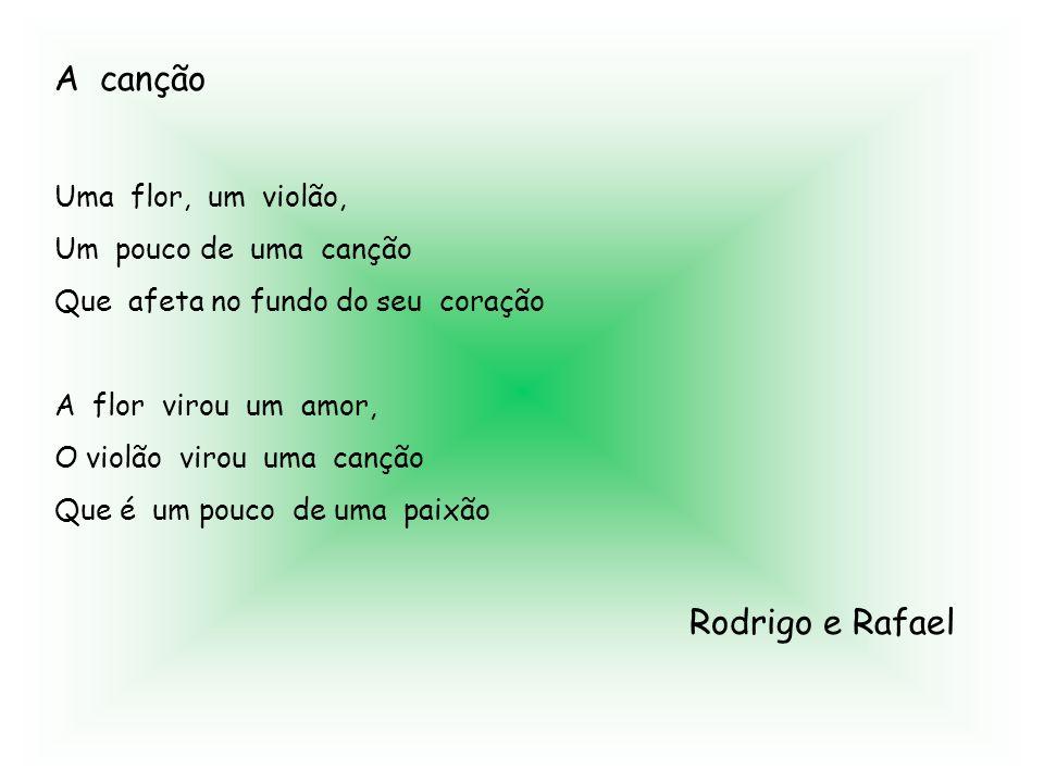 A canção Rodrigo e Rafael Uma flor, um violão, Um pouco de uma canção
