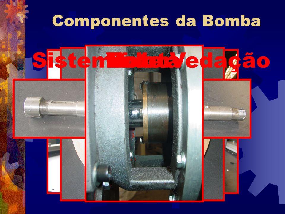 Componentes da Bomba Sistema de Vedação Eixo Rotor Voluta
