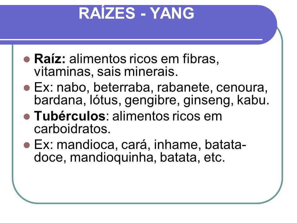 RAÍZES - YANG Raíz: alimentos ricos em fibras, vitaminas, sais minerais.