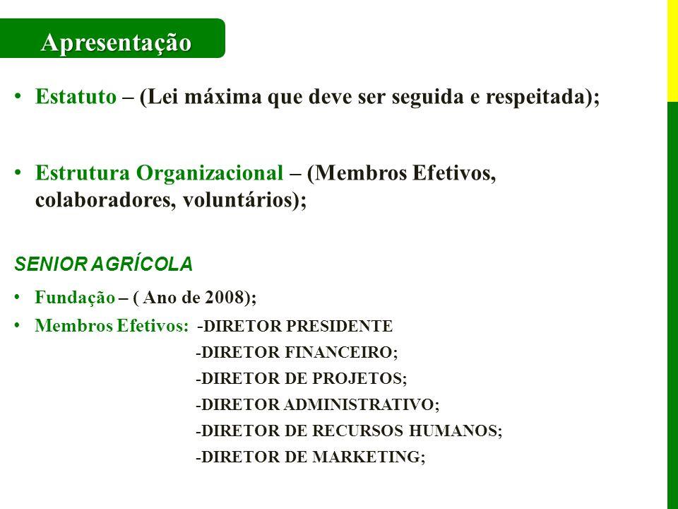 Apresentação Estatuto – (Lei máxima que deve ser seguida e respeitada); Estrutura Organizacional – (Membros Efetivos, colaboradores, voluntários);