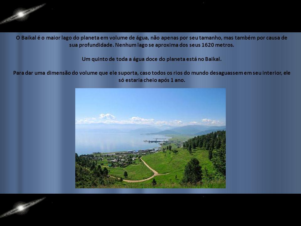 Um quinto de toda a água doce do planeta está no Baikal.