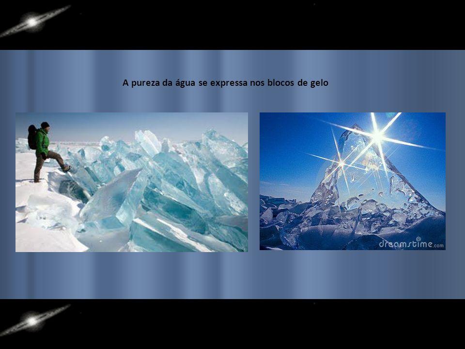 A pureza da água se expressa nos blocos de gelo