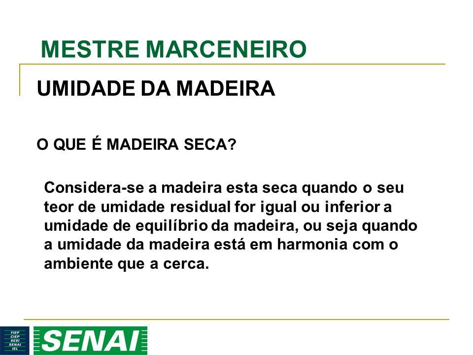 UMIDADE DA MADEIRA O QUE É MADEIRA SECA
