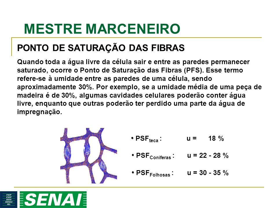 PONTO DE SATURAÇÃO DAS FIBRAS