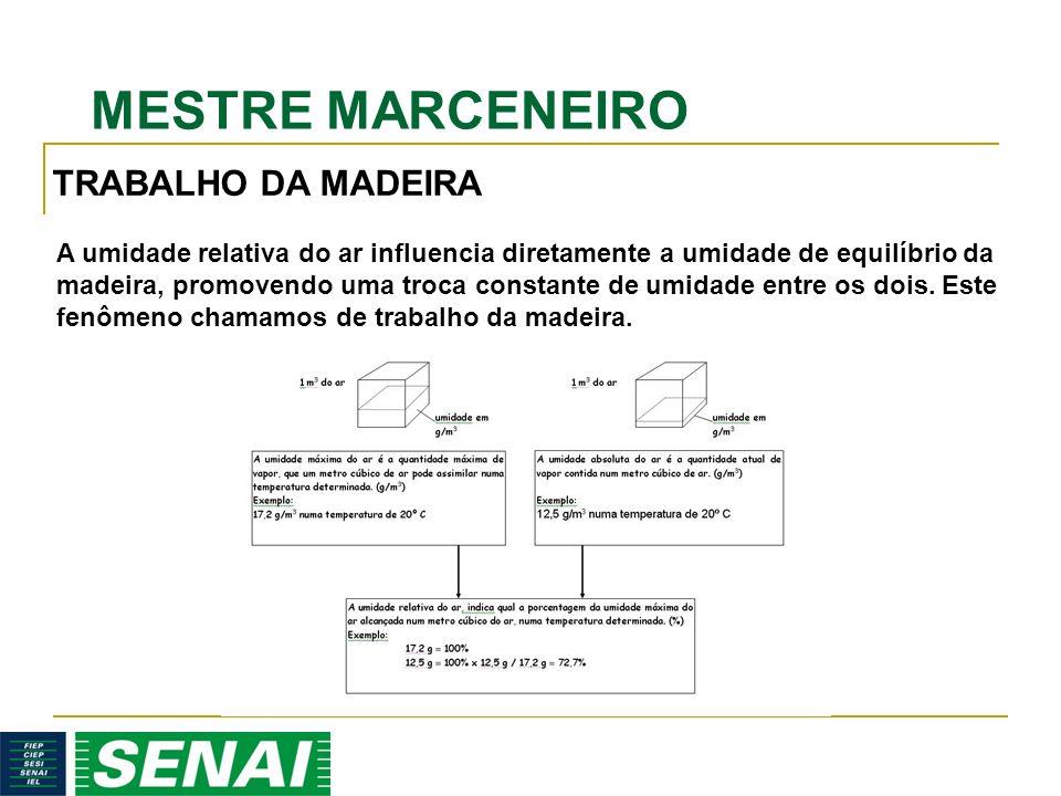 TRABALHO DA MADEIRA