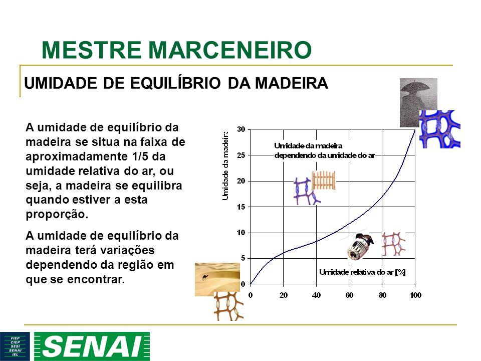 UMIDADE DE EQUILÍBRIO DA MADEIRA
