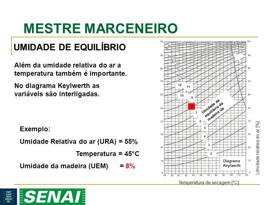 UMIDADE DE EQUILÍBRIO Além da umidade relativa do ar a temperatura também é importante.