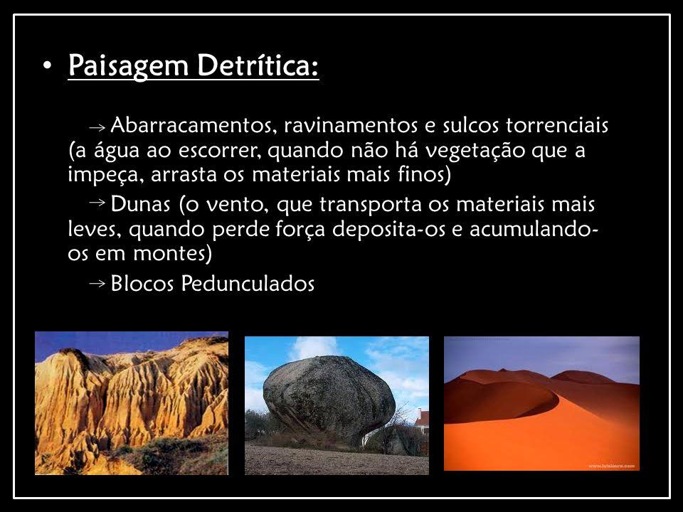 Paisagem Detrítica: