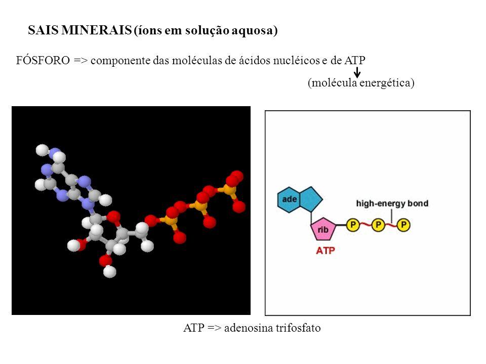 SAIS MINERAIS (íons em solução aquosa)