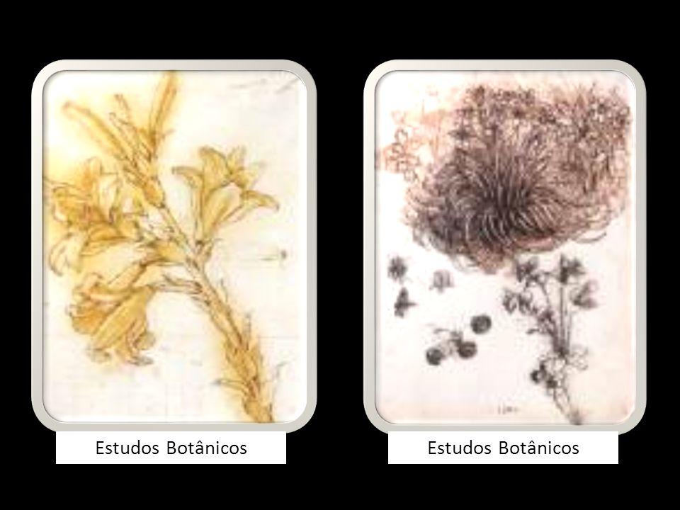 Estudos Botânicos Estudos Botânicos