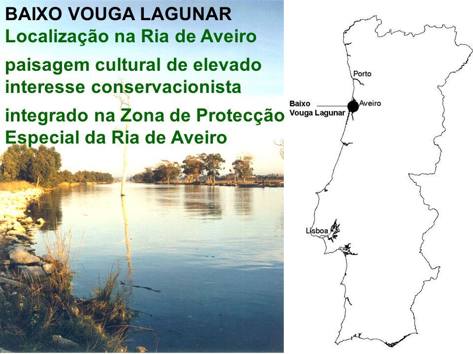 BAIXO VOUGA LAGUNAR Localização na Ria de Aveiro