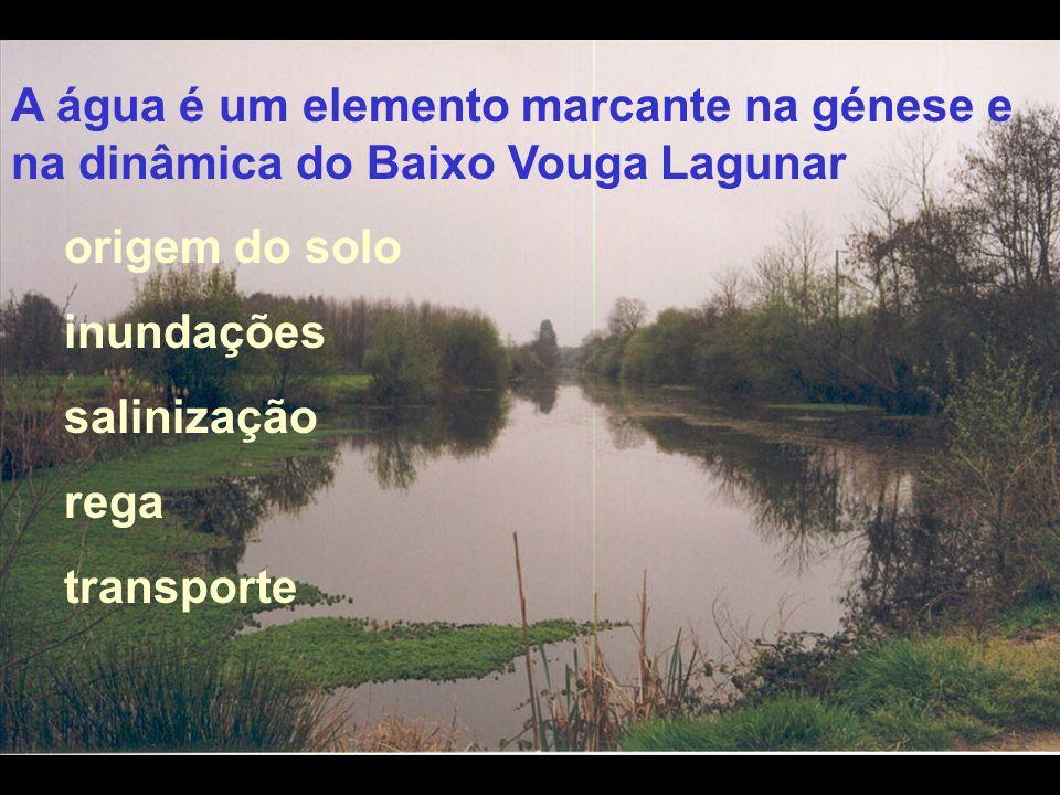 A água é um elemento marcante na génese e na dinâmica do Baixo Vouga Lagunar