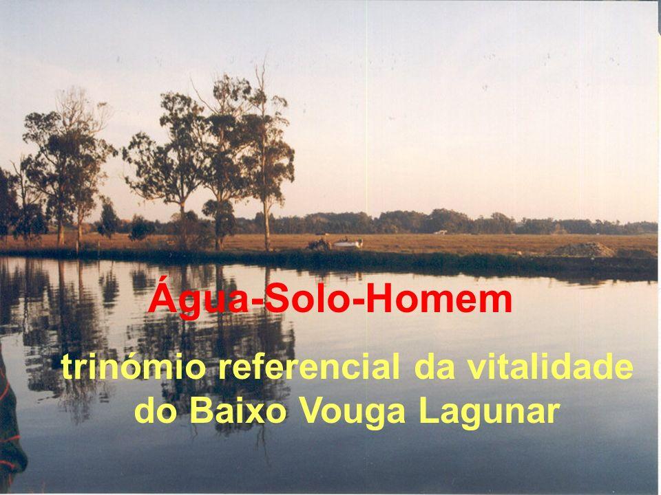 trinómio referencial da vitalidade do Baixo Vouga Lagunar