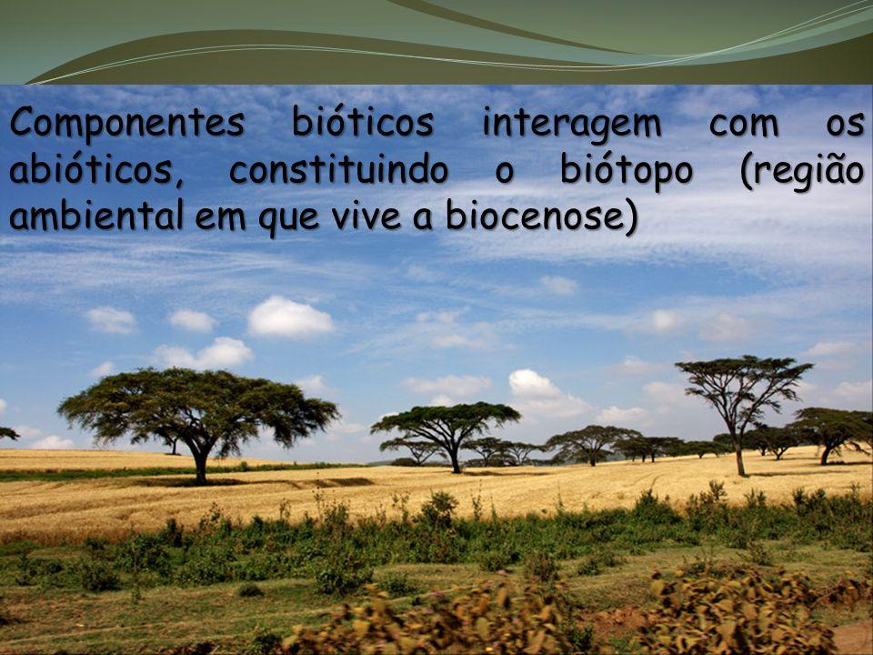Componentes bióticos interagem com os abióticos, constituindo o biótopo (região ambiental em que vive a biocenose)