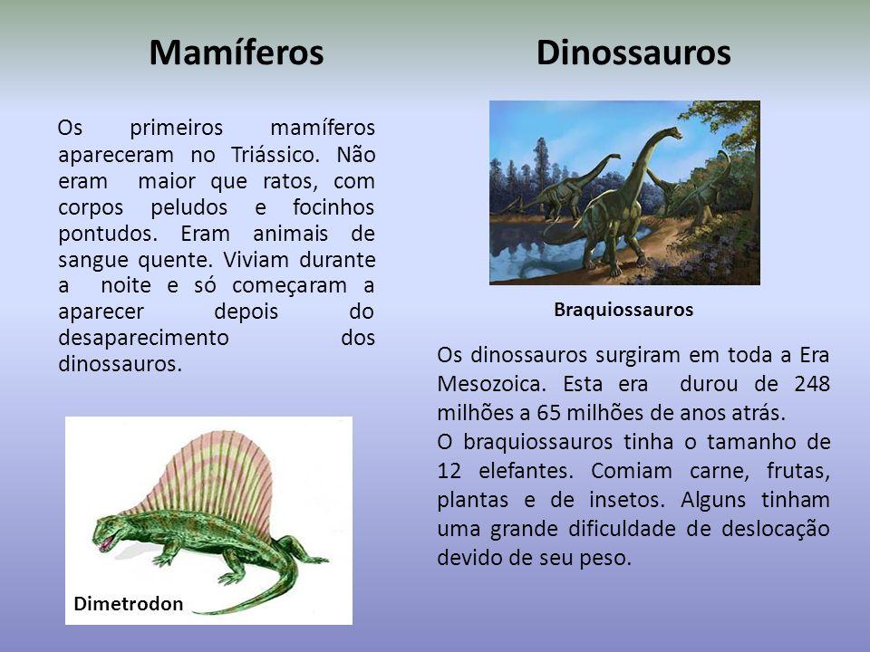 Mamíferos Dinossauros