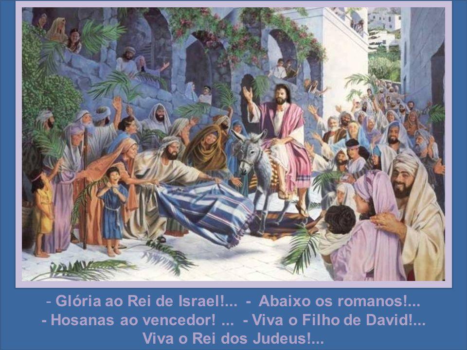 - Glória ao Rei de Israel!... - Abaixo os romanos!...