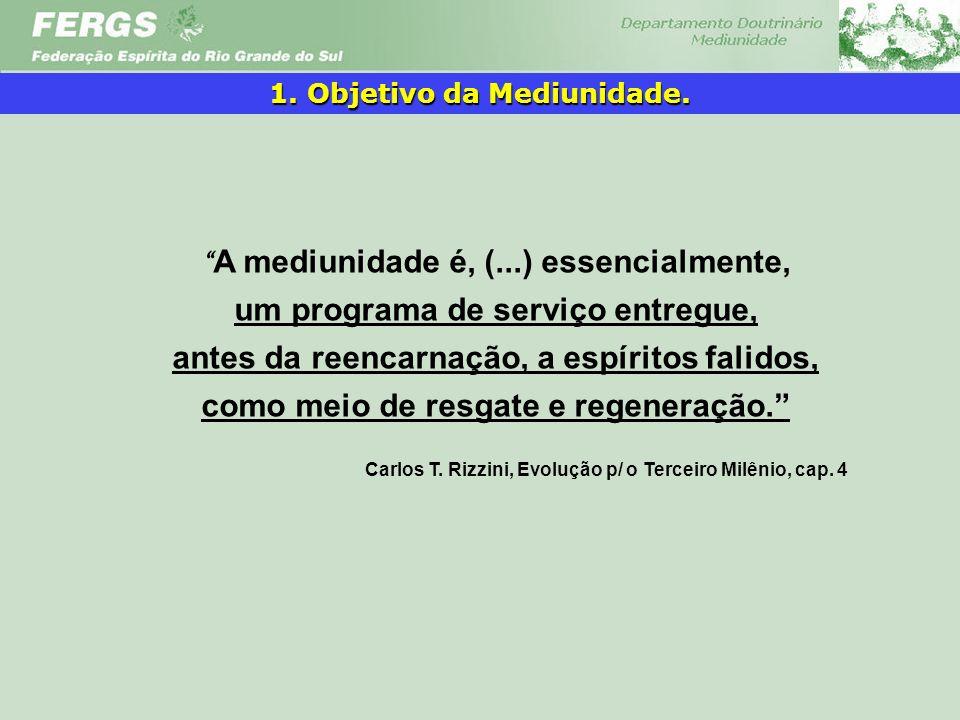Carlos T. Rizzini, Evolução p/ o Terceiro Milênio, cap. 4