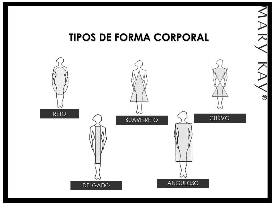 TIPOS DE FORMA CORPORAL