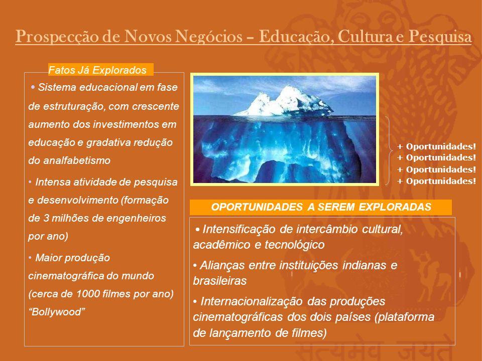 Prospecção de Novos Negócios – Educação, Cultura e Pesquisa