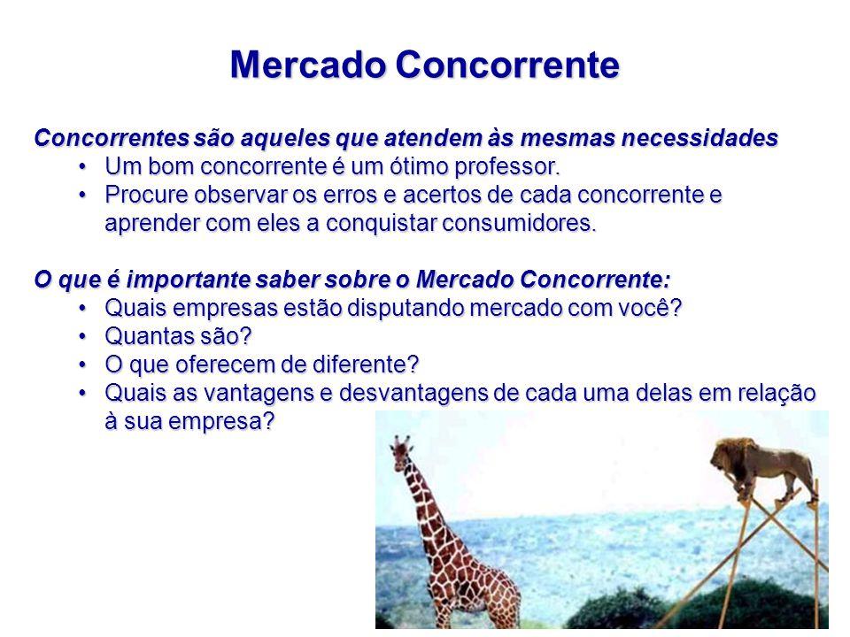 Mercado Concorrente Concorrentes são aqueles que atendem às mesmas necessidades. Um bom concorrente é um ótimo professor.