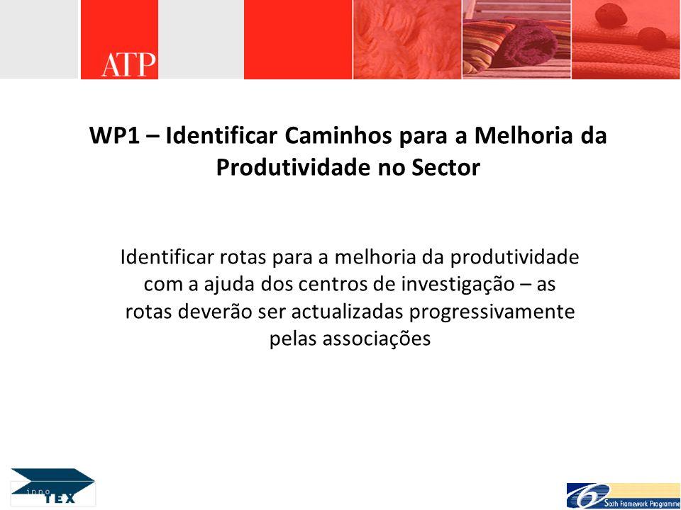 WP1 – Identificar Caminhos para a Melhoria da Produtividade no Sector
