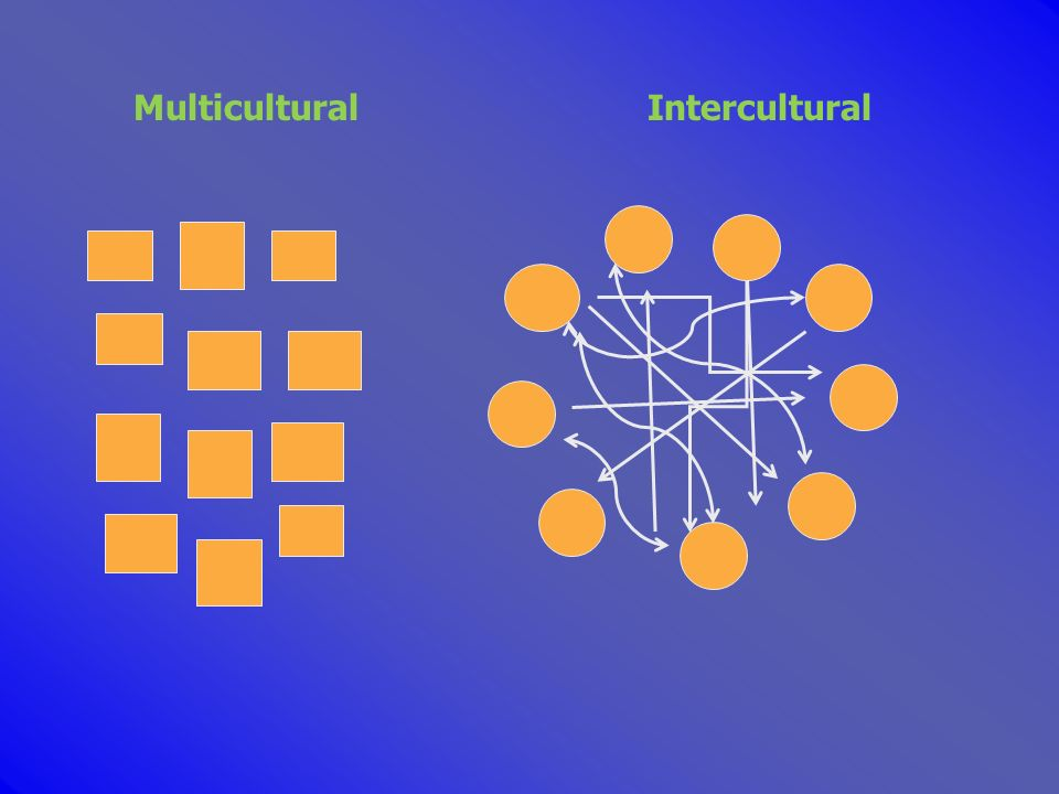 Multicultural Intercultural