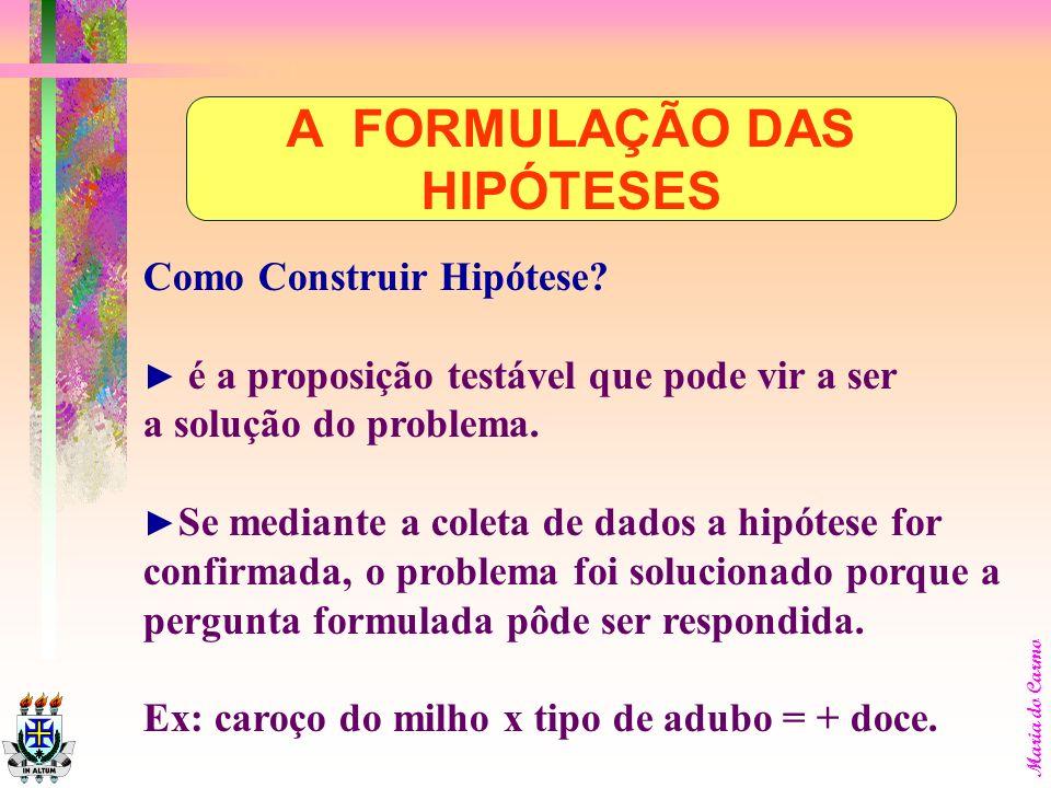 A FORMULAÇÃO DAS HIPÓTESES