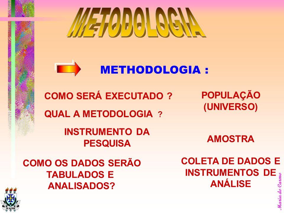 METODOLOGIA METHODOLOGIA : POPULAÇÃO COMO SERÁ EXECUTADO (UNIVERSO)