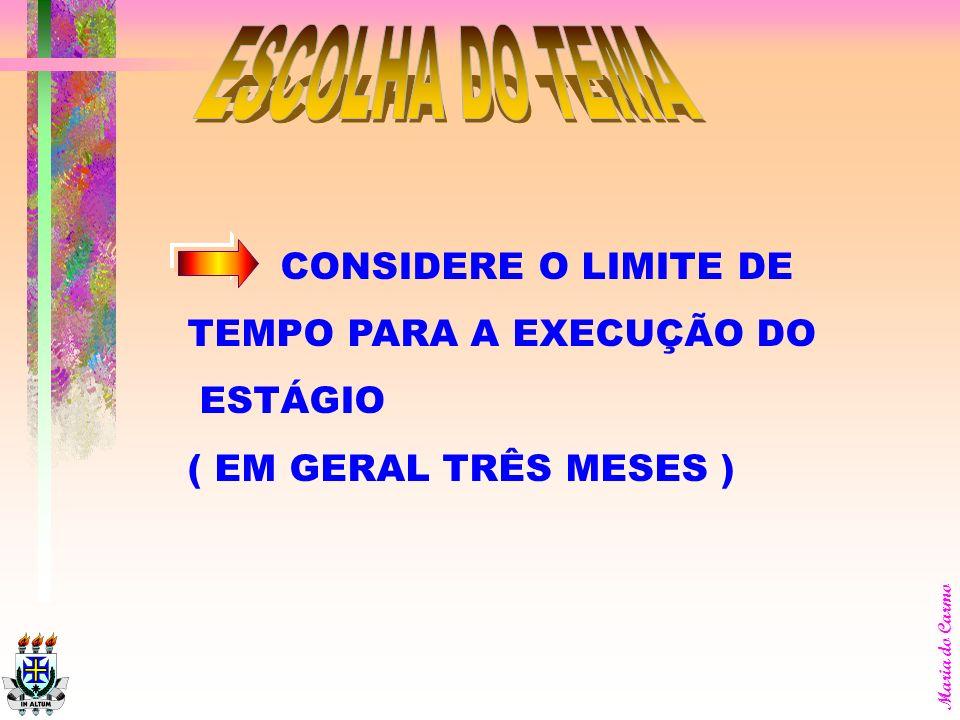 ESCOLHA DO TEMA CONSIDERE O LIMITE DE TEMPO PARA A EXECUÇÃO DO ESTÁGIO