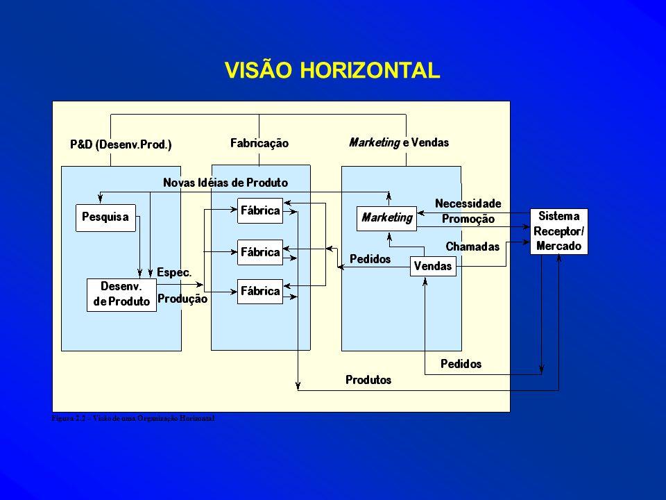 VISÃO HORIZONTAL Figura 2.2 – Visão de uma Organização Horizontal