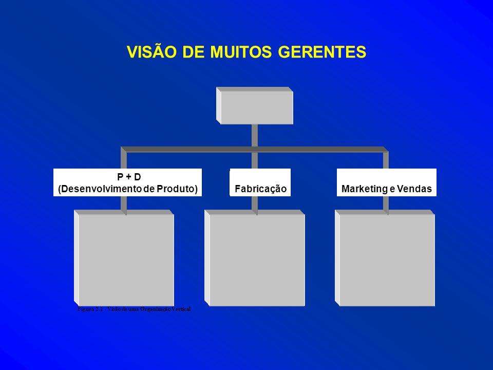 VISÃO DE MUITOS GERENTES (Desenvolvimento de Produto)