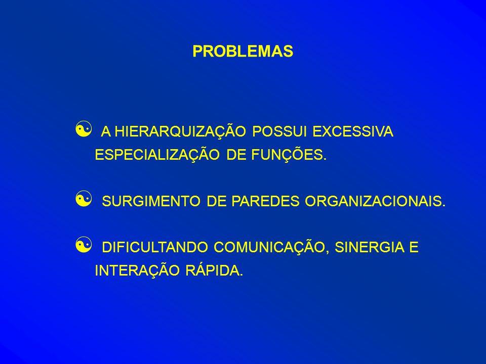 PROBLEMAS A HIERARQUIZAÇÃO POSSUI EXCESSIVA ESPECIALIZAÇÃO DE FUNÇÕES.