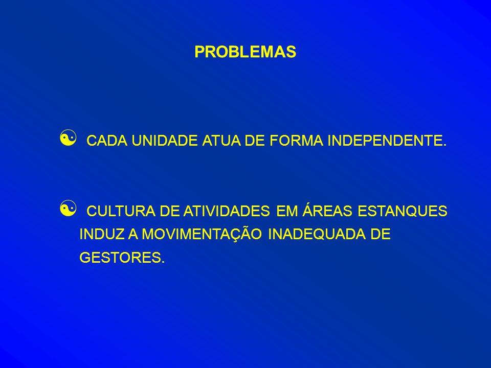 PROBLEMAS CADA UNIDADE ATUA DE FORMA INDEPENDENTE.