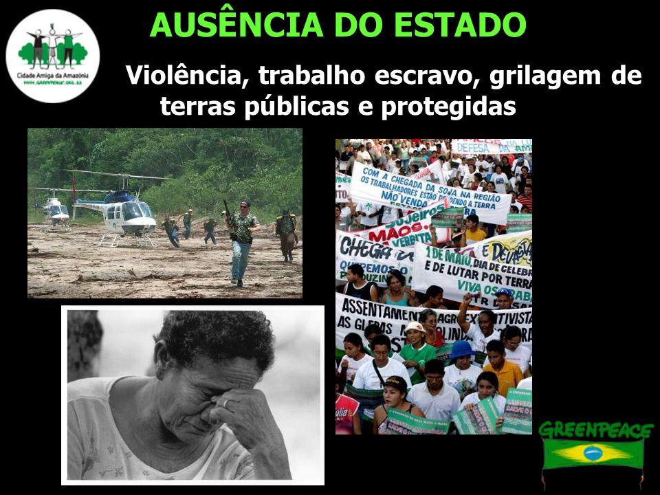 Violência, trabalho escravo, grilagem de terras públicas e protegidas