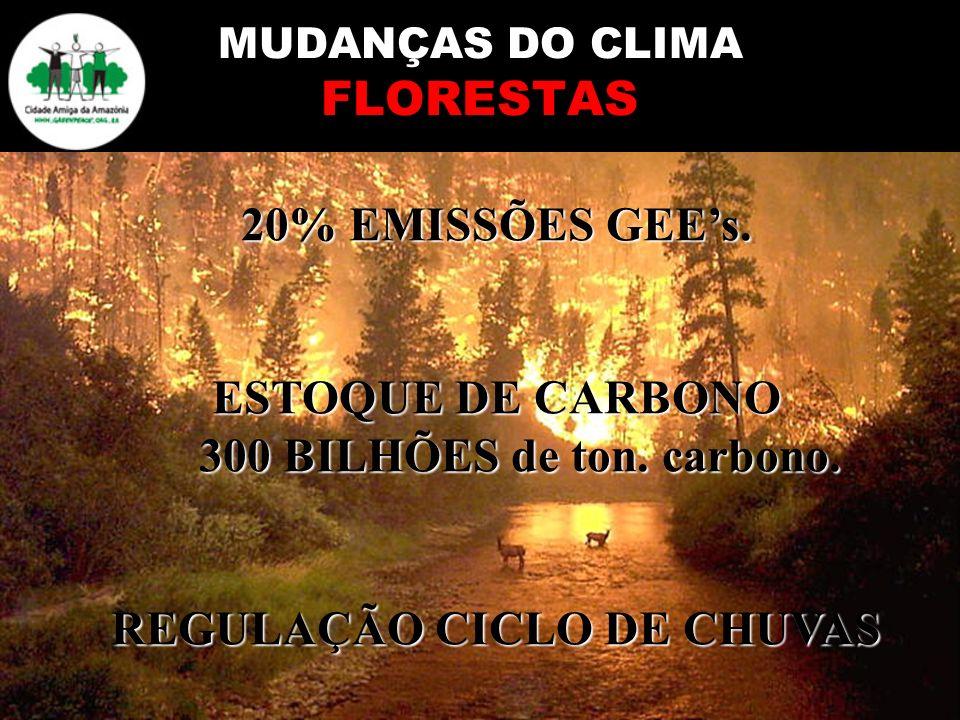 MUDANÇAS DO CLIMA FLORESTAS