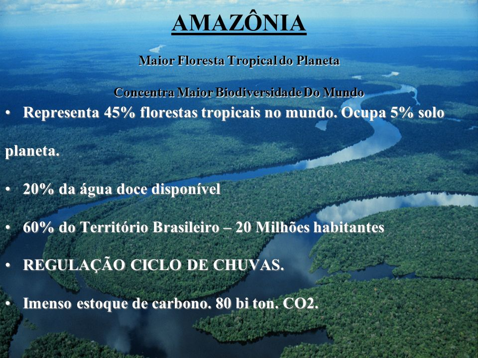 AMAZÔNIA Maior Floresta Tropical do Planeta Concentra Maior Biodiversidade Do Mundo