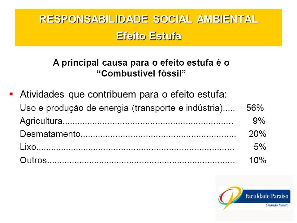 RESPONSABILIDADE SOCIAL AMBIENTAL Efeito Estufa