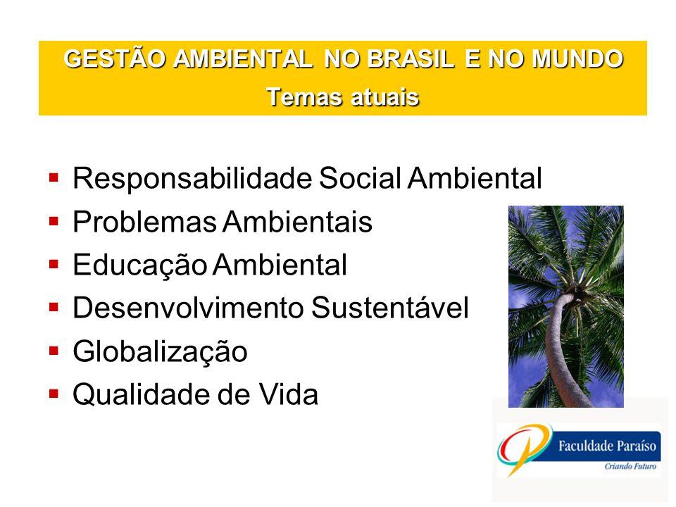 GESTÃO AMBIENTAL NO BRASIL E NO MUNDO Temas atuais
