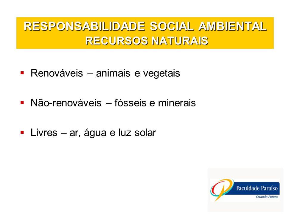 RESPONSABILIDADE SOCIAL AMBIENTAL RECURSOS NATURAIS