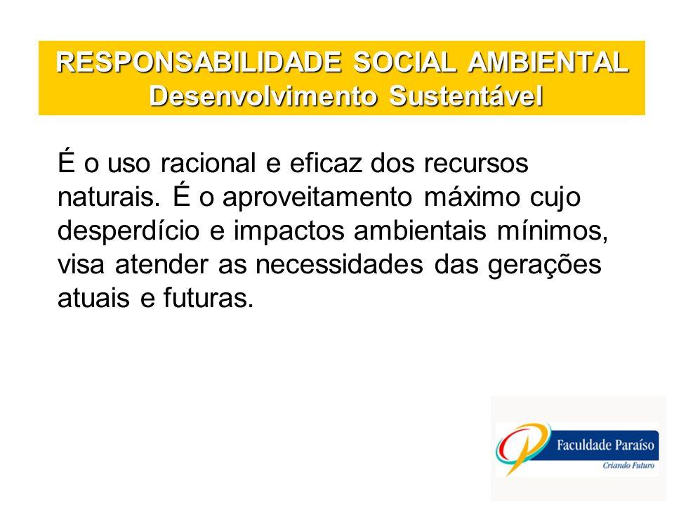 RESPONSABILIDADE SOCIAL AMBIENTAL Desenvolvimento Sustentável