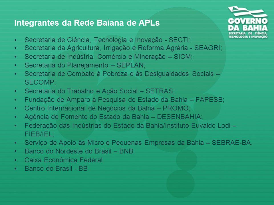 Integrantes da Rede Baiana de APLs