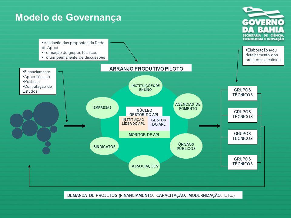 Modelo de Governança ARRANJO PRODUTIVO PILOTO