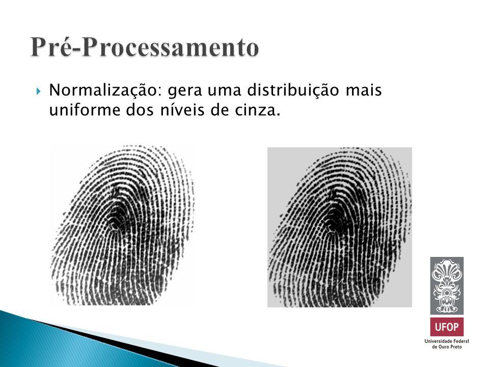 Pré-Processamento Normalização: gera uma distribuição mais uniforme dos níveis de cinza.