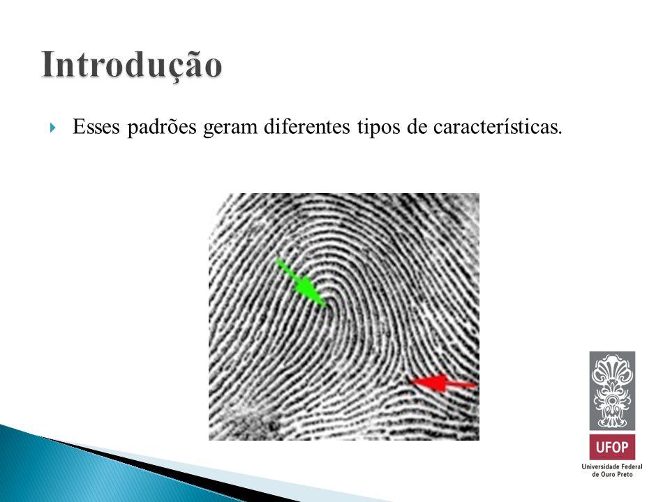 Introdução Esses padrões geram diferentes tipos de características.